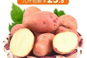 【云南小土豆】马铃薯、洋芋!爱心助农产品包邮低至18.8元!9斤装更优惠!