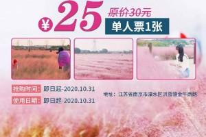 【南京】国庆可用!南京周边地区超火的网红打卡点【郭兴庄园】单人票仅需25元!粉黛装点着的秋天,等你来圆一场粉色的童话梦!