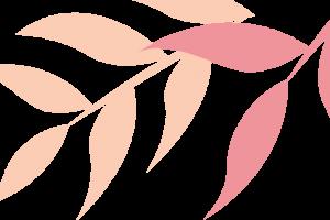 【上海31店通用】196元抢门市价269元10斤智利直采车厘子![诚实果品批发行]【到店自提】|甜入你心尖的智利车厘子来袭!南半球的红钻,尝鲜正当时!智利出口协会指定合作门店!脆甜爆汁!这个冬日要和车厘子锁死!【电话预约】