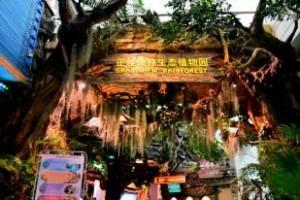2021年广州正佳雨林生态植物园网络亲子套票(夜场)18:00-21:30
